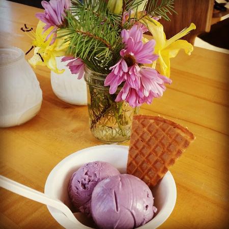 wildberry-lavender-ice